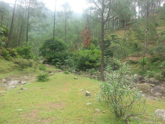 Camp Roxx: nice walking area
