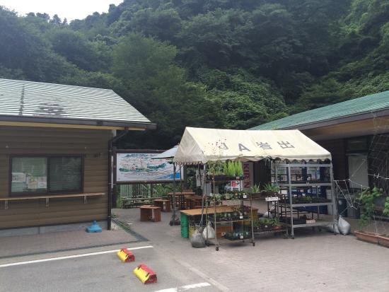 Michi no Eki Negoro Sakuranosato