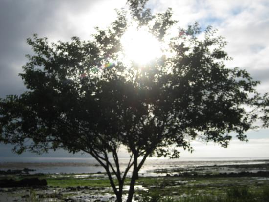 Photo of Chito Beach Resort Sekiu