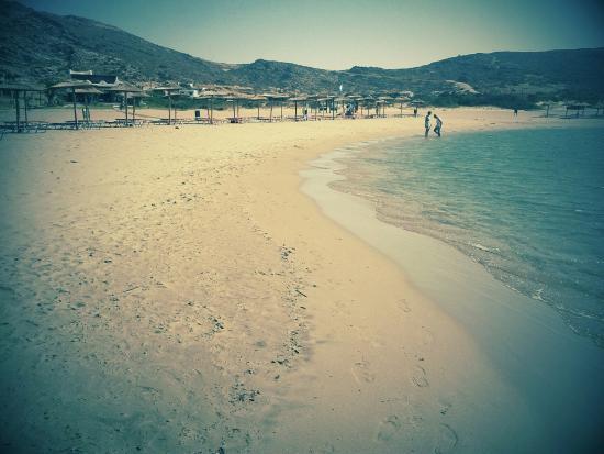 Venus Hotel: Η παραλία.