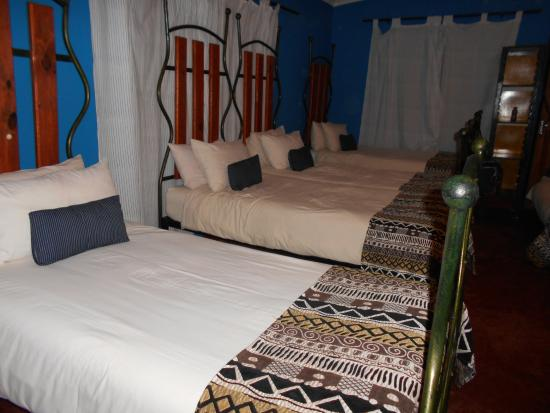 Gecko Backpackers: 8 Bed Dorm with private  toilet and basin.