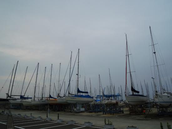 Tsu Yacht Harbor: 天に伸びるマストのポール
