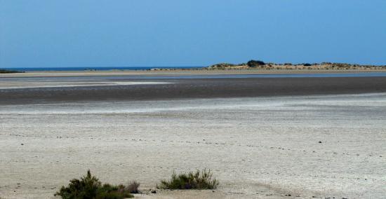 LES ARCADES: Spiaggia delle Camargue