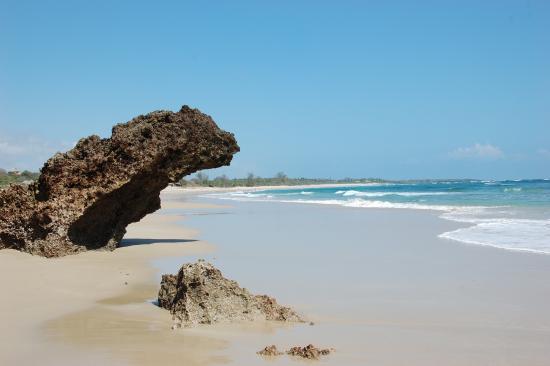 The Lighthouse Beach Resort: The beach
