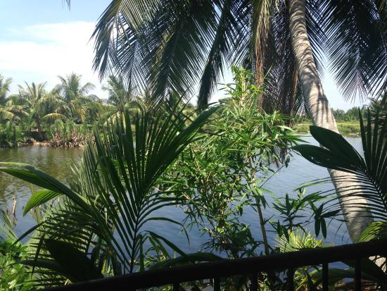 Hoi An Yoga : View from yoga class.