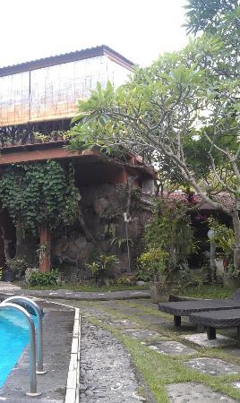 أوكاواتي هوتل: Вид из бассейна