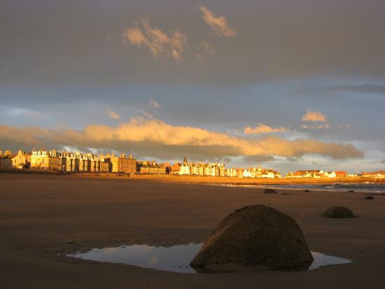 The Wing, Bed and Breakfast: The East Bay, North Berwick