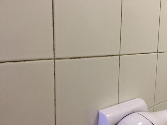 Muffa su piastrelle in bagno - Foto di Albergo Laura, Roma - TripAdvisor
