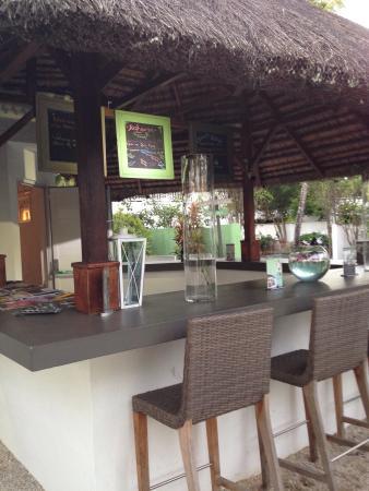 Esprit-Libre Restaurant & Guest-House : Petit vision du jardin à 18h en hivers