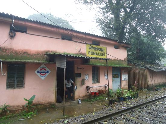 Mollem National Park, Indien: Sonalium station that comes between Dudhsagar and Kulem