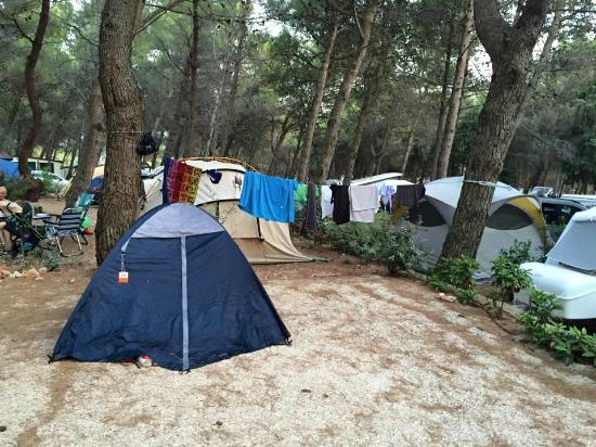 写真Camp Kovacine枚