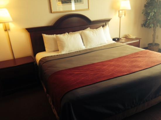 Comfort Inn & Suites: King Bedroom