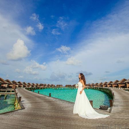 ลิลี่ บีช รีสอร์ท แอนด์ สปา-ออล อินคลูซีฟ: lagoon villas