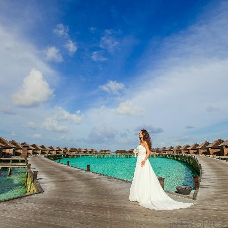 Lily Beach Resort & Spa: lagoon villas
