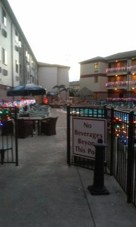 Put-in-Bay Resort Hotel and Conference Center: Pool area lit up for Christmas in July