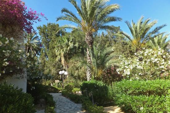 Marhaba Salem : Hotel gardens