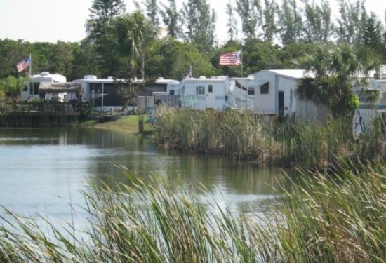KOA Fort Myers / Pine Island: View