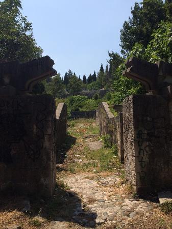 Partisan Cemetery: photo0.jpg
