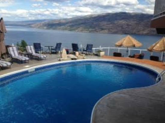 Okanagan Oasis B&B: What a pool and view!