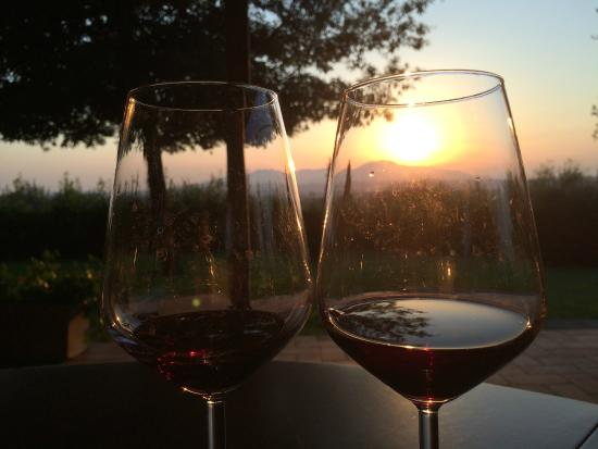 Agriturismo Montalto: Great views and a great wine