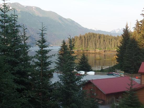 Tutka Bay Lodge: A room with a view!