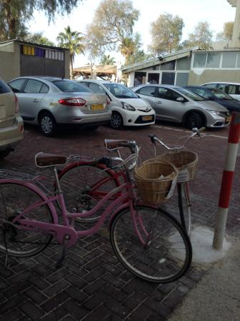 Residence Hotel: Прокатные велосипеды