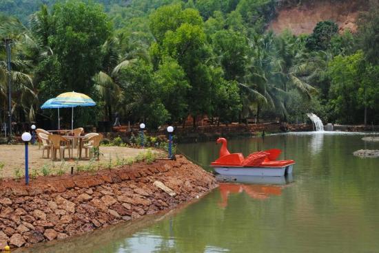 boating picture of go green homestay karwar tripadvisor