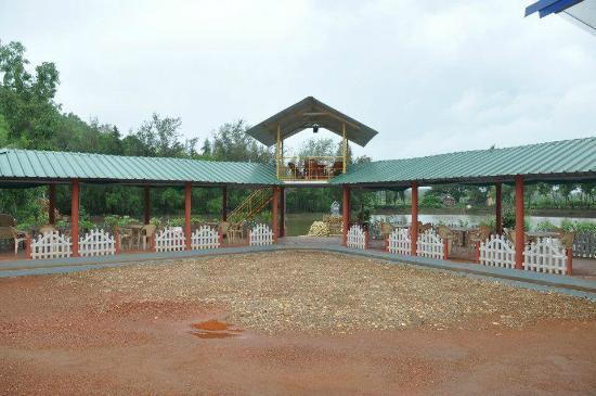 go green homestay karwar karnataka guesthouse reviews photos