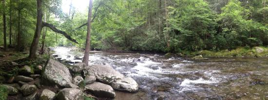 Great Smoky Mountains National Park, TN: Great Smoky National Park