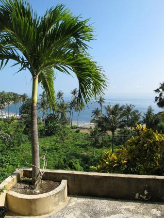 Bali Amed Bungalows: Вид с балкона