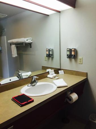 Wood River Inn & Suites : Bathroom with Soap Dispensers