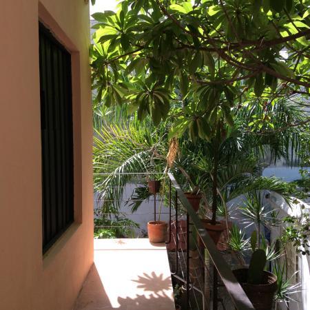Hotel Casa Carmita: Patio chambre de l'étage