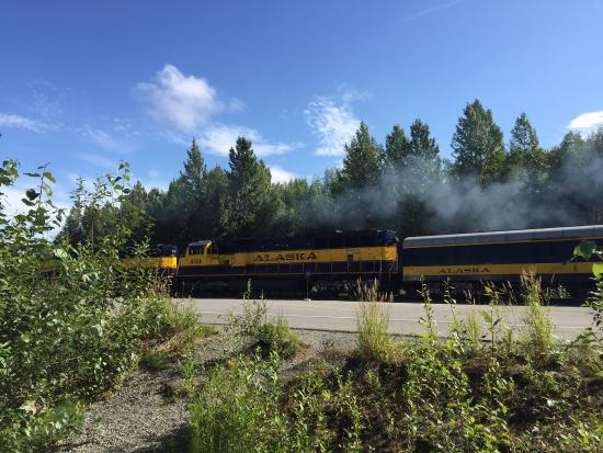 Talkeetna Camper Park: Train runs along back of campground....cool