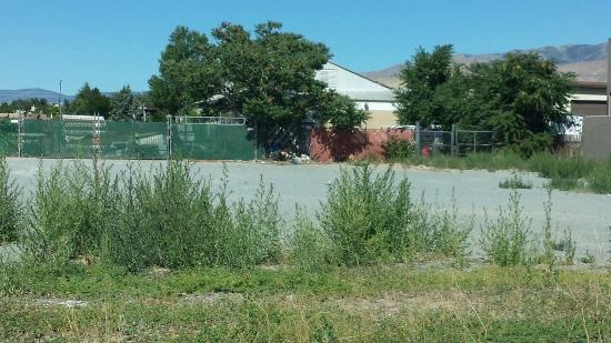 Vacant lot with trash piled up (taken from Ramada parking lot, looking directly across street)