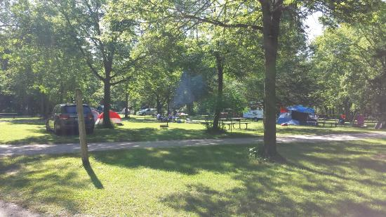 Flandrau State Park: View of campsites #71-77 No screening between sites
