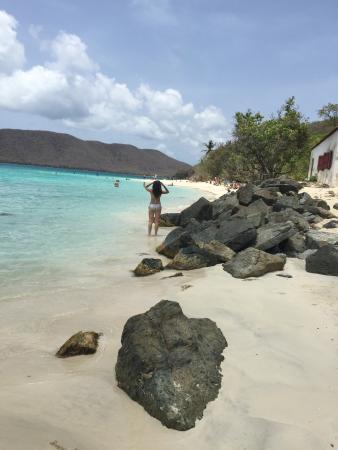 Turtle Bay: photo0.jpg