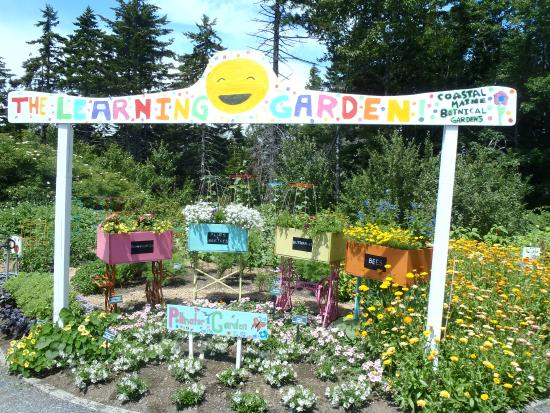 The learning garden in the Children\'s garden - Picture of Coastal ...