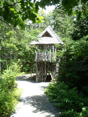 The Treehouse In The Children S Garden Picture Of Coastal Maine
