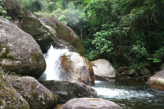 Parque Estadual da Serra do Mar - Núcleo Caraguatatuba