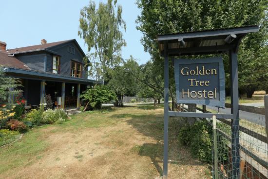 Golden Tree Hostel : front