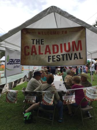 Harder Hall By Evrentals: Lake Placid's annual Caladium Festival is 3 day weekend late in July.
