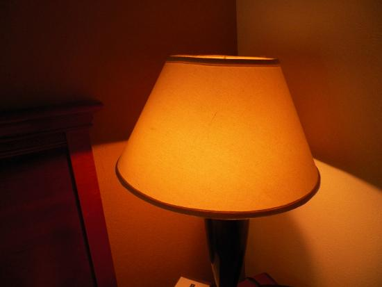 Clarion Inn Columbia-Airport: Lampshade that is not attached