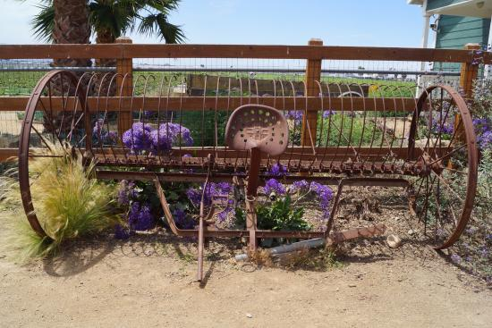 McGrath Family Farm: the farm