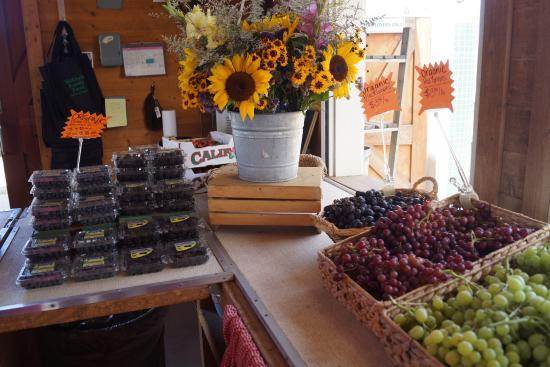 McGrath Family Farm: store at the farm