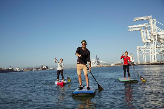 Oakland, CA: Paddle boarding in the Estuary