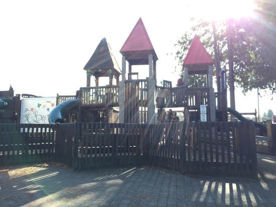 Dream Playground
