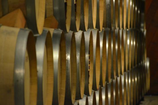 Jericho Canyon Vineyard: new oak casks