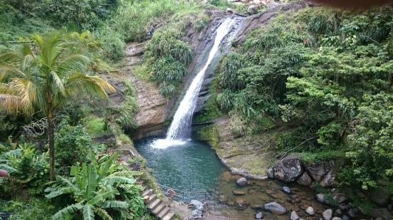 Not for the feint hearted picture of concord falls - Crystal pools waterfall ...