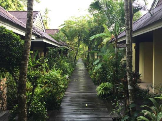 Sunda Resort: コテージ