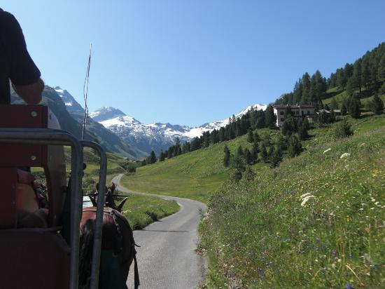 Engadine: 正面にフェックス氷河を見ながら馬車は進みます